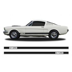 GT 350 stripes